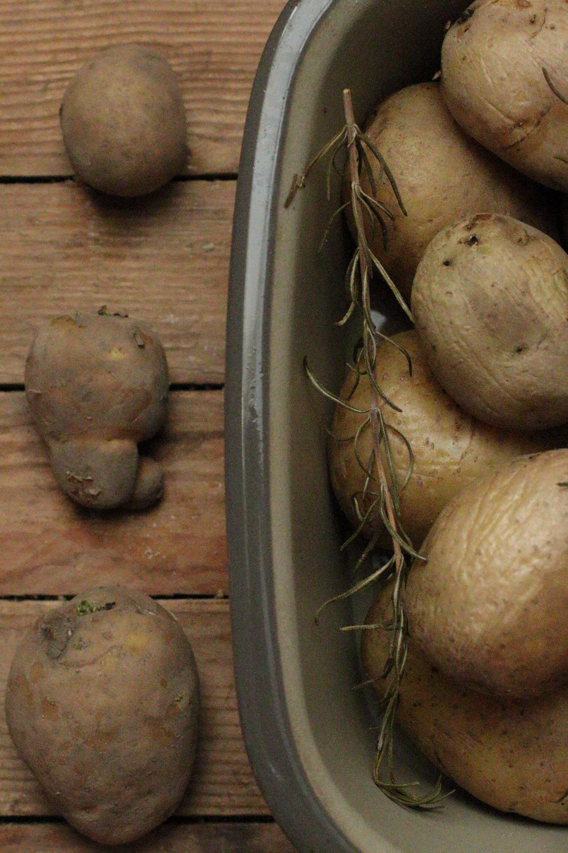 Pellkartoffeln Ofenkartoffeln Schmorkartoffeln Foodrevers Clean Eating Pampered Chef