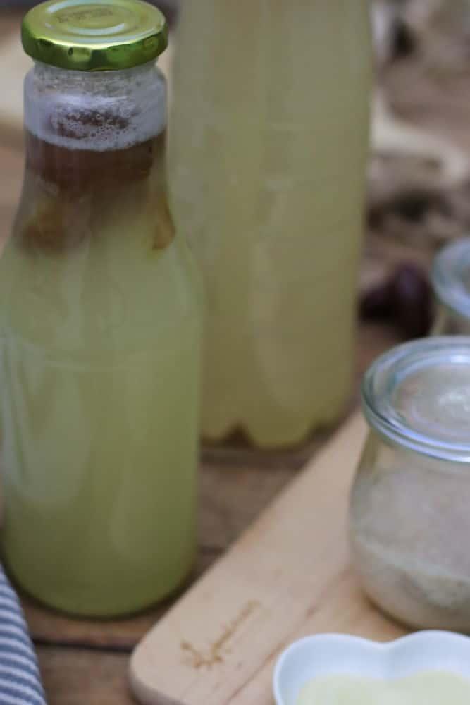 Hefewasser selber mache Hefe herstellen gesund Foodrevers Clean Eating Thermomix backen