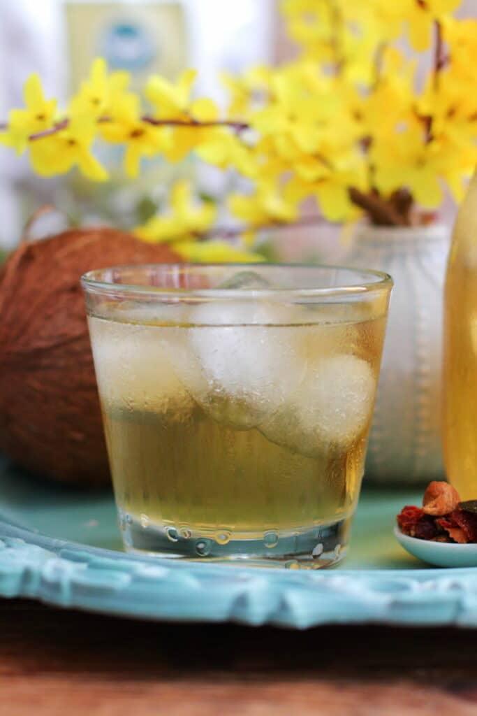 Tropical Eistee zuckerfrei selber machen Bio Früchtetee Tropical